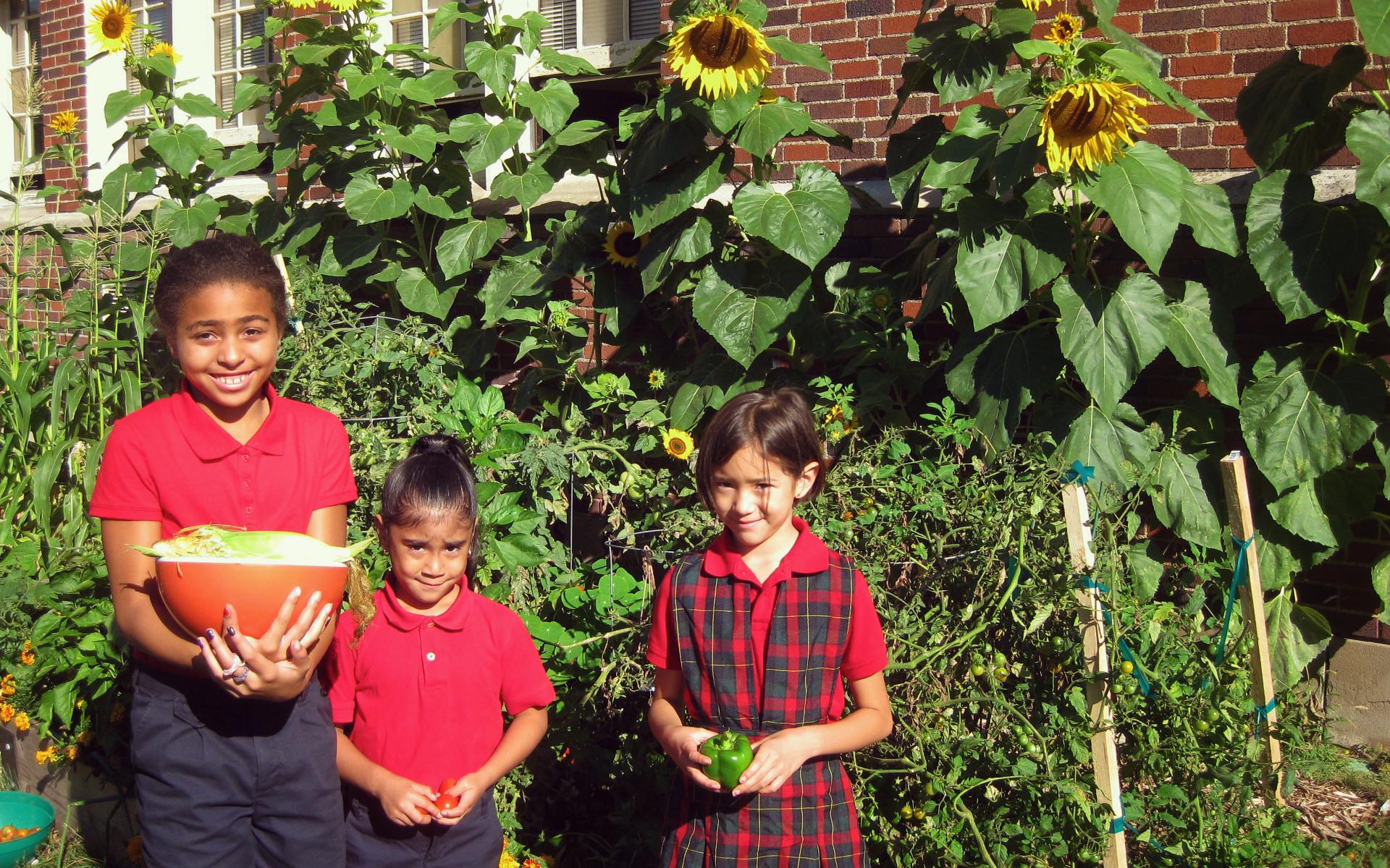 Un jardín es una de las muchas actividades que ayudan a los estudiantes a aprender sobre el mundo.